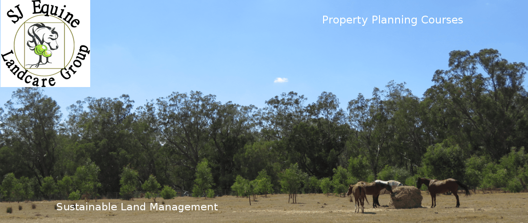Horse property at Serpentine, Western Australia