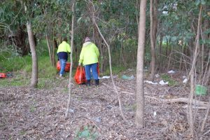 Byford Enviro-Link volunteers collecting rubbish at Mandejal Brook POS, Whitby, Western Australia