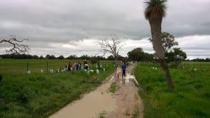 children planting along a road