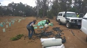 women planting in Serpentine Jarrahdale