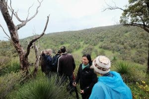 people walking through bushland in keysbrook