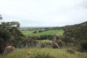 hills Serpentine