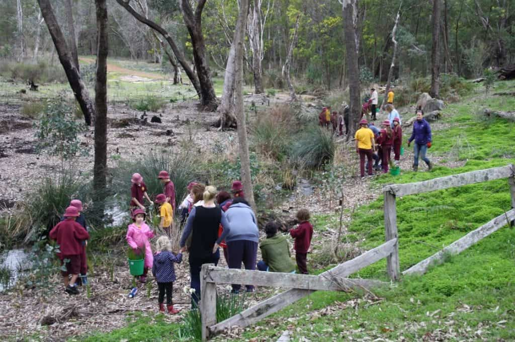 people planting seedling at Gooralong Brook, Jarrahdale