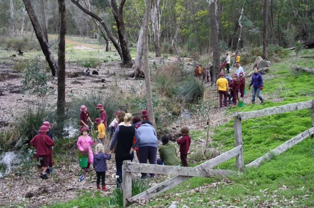 people planting seedling at Gooralong Brook, Jarrahdale
