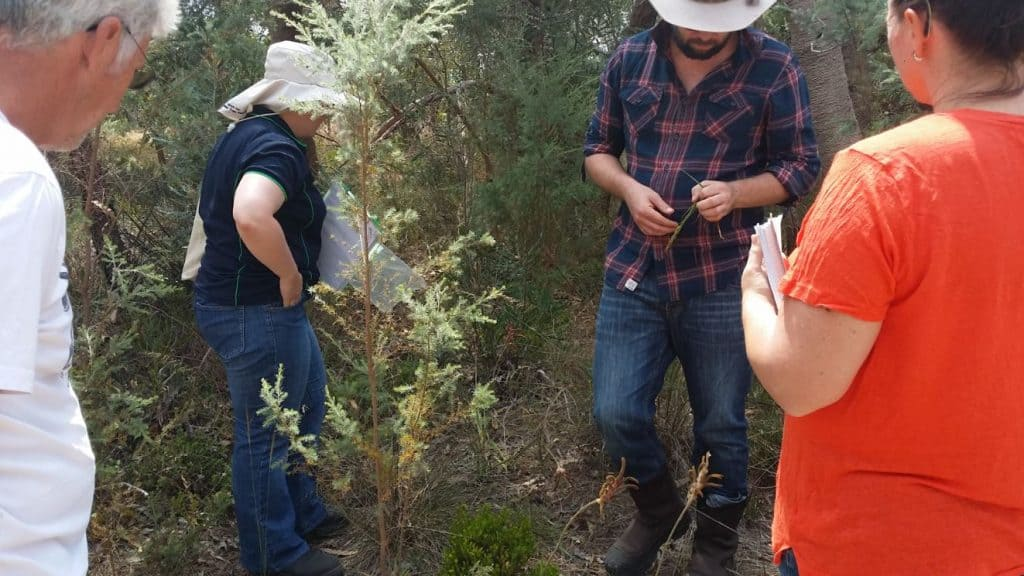 two men and two women inspecting bushland un Serpentine