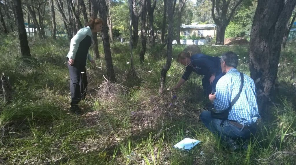 site-visit-with-teachers-ndps-bushland