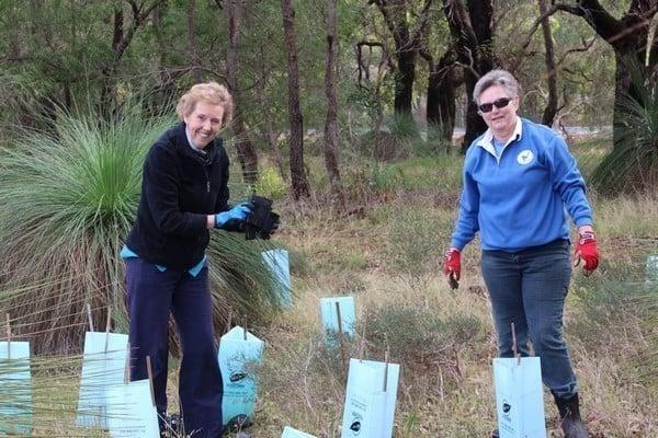two women volunteers from BEL planting seedlings in Mundijong