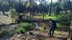 volunteers planting at Gooralong Brook