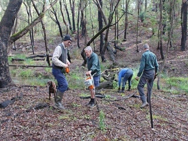 volunteers planting seedlings at Gooralong Brook, Jarrahdal