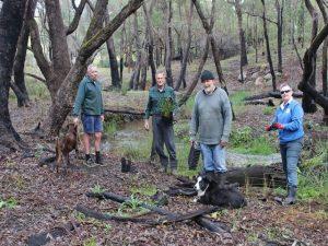 volunteers planting seedlings at Gooralong Brook, Jarrahdale July 2017