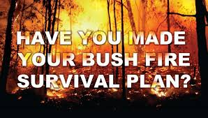 a picture of a bushfire with the words-Have you made your bushfire survival plan?