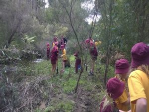 Jarrahdale school children at Turtle Creek