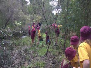Jarrahdale school children at Turtle Creek