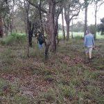 Officer from Landcare SJ setting up flora quadrat at Serpentine , Western Australia