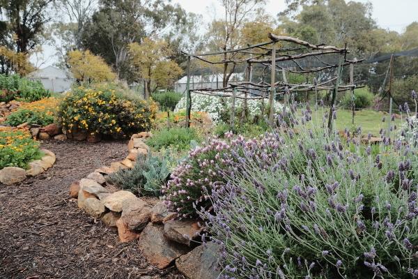 garden in Keysbrook