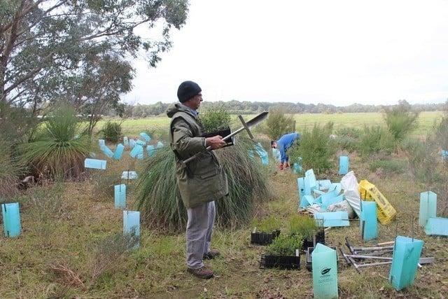 Landcare SJ community members planting native seedlings at Mundijong Road reserve