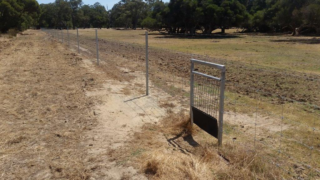 kangaroo gates installed in a conservation fence