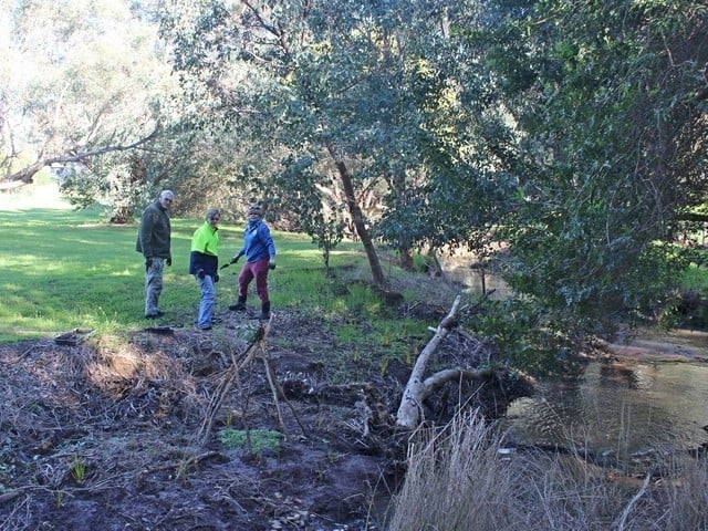 three people planting at Old Brickworks Reserve