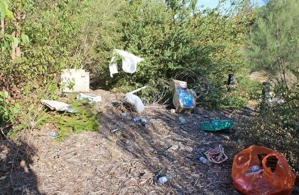 rubbish strewn in bushland