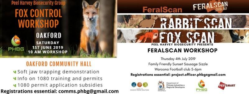 Event flyer for Feral Scan Workshop