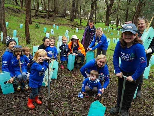 school children planting seedlings in bushland