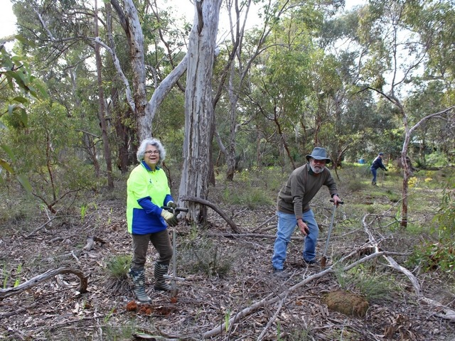 man and woman planting in bushland