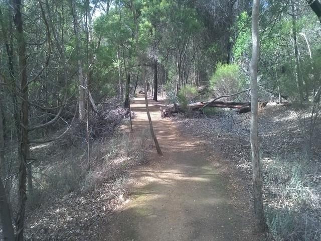 gravel pathway surrounded by western Australian bushland