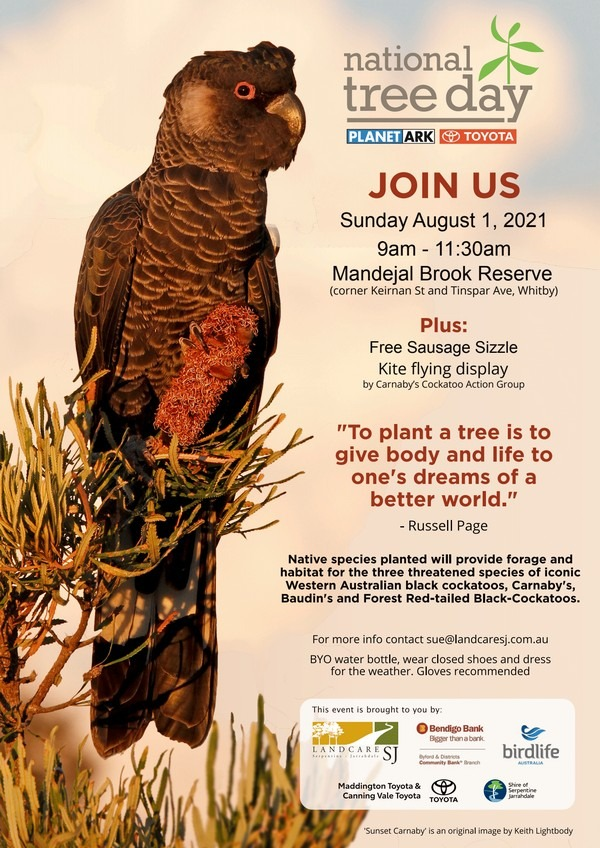 flyer for national tree day